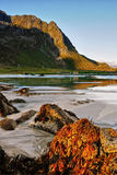 Beach, Coastline, Sunrise, Lofoten Royalty Free Stock Images