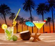 Beach cocktail sunset on palm tree sand mojito margarita. Coconut royalty free stock photo