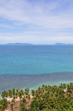 Beach and Coconut Royalty Free Stock Photos