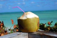 Beach Coconut Cocktail Stock Photography