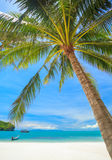 Beach and Coconut palm, Angthong national park island,Thailand Royalty Free Stock Photos