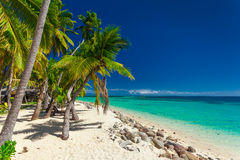 Beach with coconut palm trees and clear lagoon on Fiji Islands Royalty Free Stock Photos
