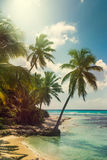 Beach with coconut palm,  uninhabited tropical island Stock Photos