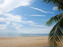 Beach coconut sea view. With blue sky Thailand Royalty Free Stock Photo