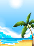 A beach with a coconut tree. Illustration of a beach with a coconut tree Stock Images