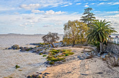 The beach in Colonia, Uruguay Stock Images