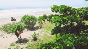 Beach. Color peace green motorbike people joyful sand trees water heaven blue sky Royalty Free Stock Images