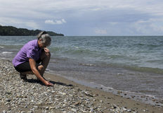 Beach combing Stock Image