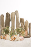 Beach Concept - glass floats, vertical. Miniature green glass floats, shells and starfish in front of rustic driftwood fence, white background Stock Photography