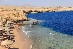 Beach with  coral reef on the shore of the Red Sea Stock Images