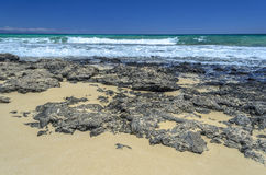Beach at Corralejo, Fuerteventura Island Stock Photo