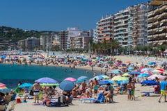 Beach on the Costa Brava (Sant Antoni de Calonge) Royalty Free Stock Photos