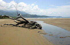 A beach in Costa Rica Stock Photo