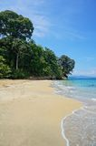 Beach in Costa Rica with lush tropical forest. Pristine sandy beach in Costa Rica with lush tropical forest, Punta Uva, Puerto Viejo de Talamanca Royalty Free Stock Image