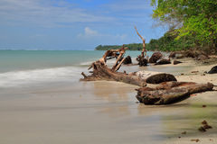 Beach in costa rica Royalty Free Stock Images