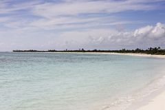 Beach of cozumel Royalty Free Stock Photo