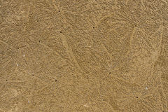 Beach crab markings. On sand. For background Royalty Free Stock Image