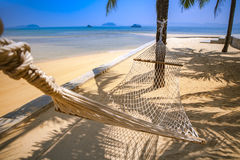 Beach cradle under coconut tree with blue sea background for sum Stock Image