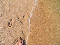 Beach of Crimea Stock Images