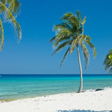 Beach in Cuba Royalty Free Stock Photography