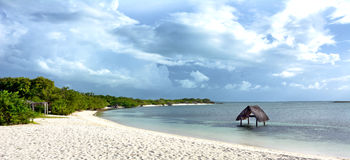 Beach Cuba Royalty Free Stock Image