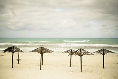 beach cuban desert several umbrellas 图库摄影