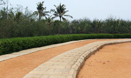 Beach curve stone path. Curve stone and sand path with trees in the beach royalty free stock images