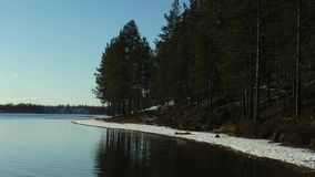 Beach with dark pine trees and the first snow reflected in the water  lake. The reflection of the shore with high dark pines, and the first stock video