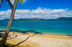 Beach on Daydream Island, Australia. Beach with palms on Daydream Island Stock Photo