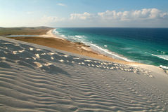 The beach of Deleisha at Socotra island Royalty Free Stock Photo