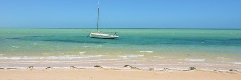 The beach at Denham, Shark Bay stock images