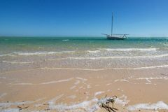 The beach at Denham, Shark Bay royalty free stock photo