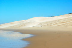 Free Beach Desert Royalty Free Stock Image - 1554566