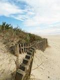 Beach. Desert beach day Royalty Free Stock Photo