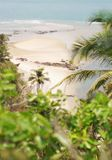 beach deserted Άποψη μέσω των φύλλων φοινικών Στοκ Εικόνες