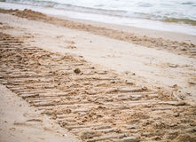 Beach destroyed by the heavy machine Royalty Free Stock Images
