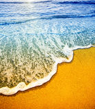 Beach detai. With space for copy Stock Photos
