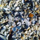Beach. The details are not the details.  They make the design Royalty Free Stock Photography