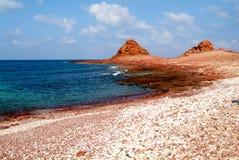 The beach of Dihamri on the island of Socotra Stock Photos