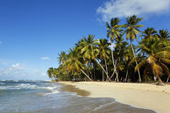 Beach dream Royalty Free Stock Photo