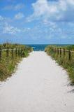 Beach dream Royalty Free Stock Image