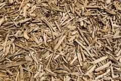 Beach Drift Wood Stock Images