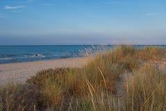 Beach Dune Royalty Free Stock Image
