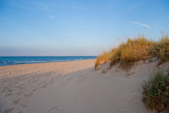 Beach Dune Royalty Free Stock Images