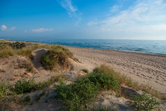 Beach Dune Royalty Free Stock Photography
