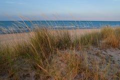 Beach Dune Stock Photography