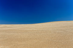 Beach dune Stock Image