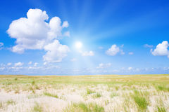 Beach and dunes. With beautiful sunlight Royalty Free Stock Photo