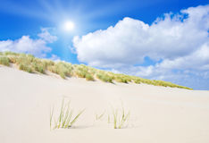 Beach and dunes Stock Photos
