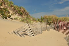 Beach Dunes Stock Photography